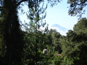 Maleta de Viajes, Centro Ecoturistíco Tepeyololco., viajes, turismo, Estados, fin de semana, naturaleza