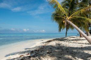 Maleta de Viajes, KAYAK, viajes, turismo, Navidad, Año Nuevo, Notiviajeros,