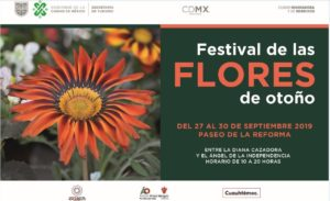 CDMX, eventos, café, Maleta de Viajes, turismo, fin de semana, flores. viaja, danza