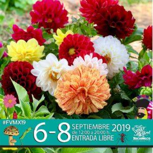 CDMX, mes patrio, eventos, Maleta de Viajes, fin de semana, cine, cultura, Xochimilco