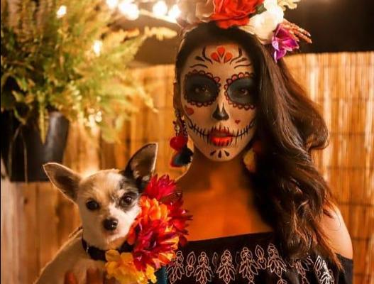Maleta de Viajes, viajes, turismo, Día de Muertos, Dog Hero, disfraces, Halloween