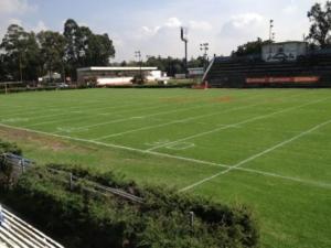 Estadio Perros Negros/ lfa.com