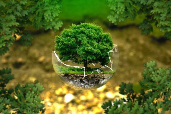 Maleta de Viajes, viajes, turismo, Día de la Tierra, medio ambiente, Greenpeace