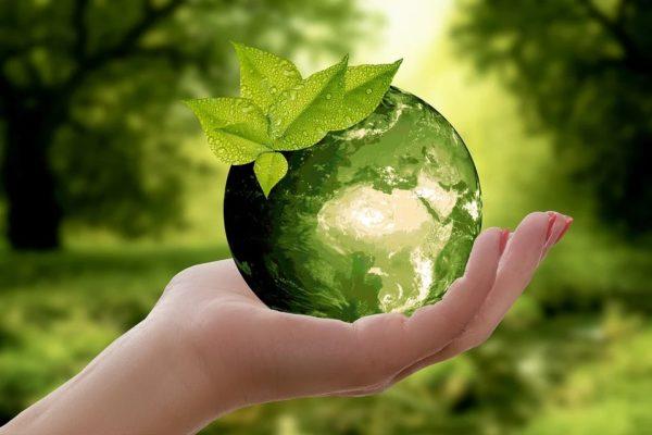 Maleta de Viajes, Timberland, Día de la Tierra, naturaleza, medioambiente, Maleta Eco