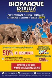 Maleta de Viajes, viajes, turismo, medioambiente, fauna, COVID-19, Maleta Pet