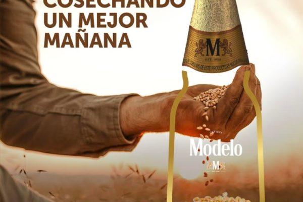 Maleta de Viajes, cerveza, Grupo Modelo, pandemia, edición especial, Baúl Gastronómico