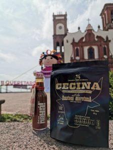 baul gastronómico-comida-comida mexicana-emprendedores viajeros-emprendimiento-gastronomía-maleta de viajes-querétaro-tradiciones-cecina-salsa nayá-salsa macha-cultura-huasteca queretana