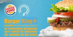 Maleta de Viajes, viajes, turismo, medio ambiente, Burguer King, Maleta Eco