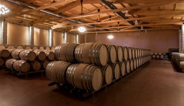 emilio moro-vinos-viñedo-vinedo-enoturismo-turismo-turistico-bebidas-gastronomia-maleta de viajes-maleta-viajes