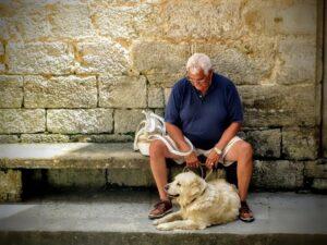 Maleta de Viajes, Maleta Pet, viajes, turismo, Día del Abuelo