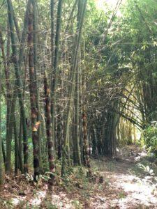 Maleta de Viajes, Hoteles, viajes, turismo, aventura, Huatulco, Maleta Eco, naturaleza, Hagia Sofía