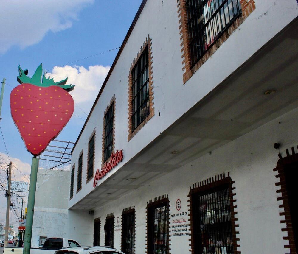 Maleta de Viajes, Irapuato, Guanajuato, fresas, berries, tour de la fresa, macrotúnel, exportación de berries, viajes de fin de semana, La Cristalita