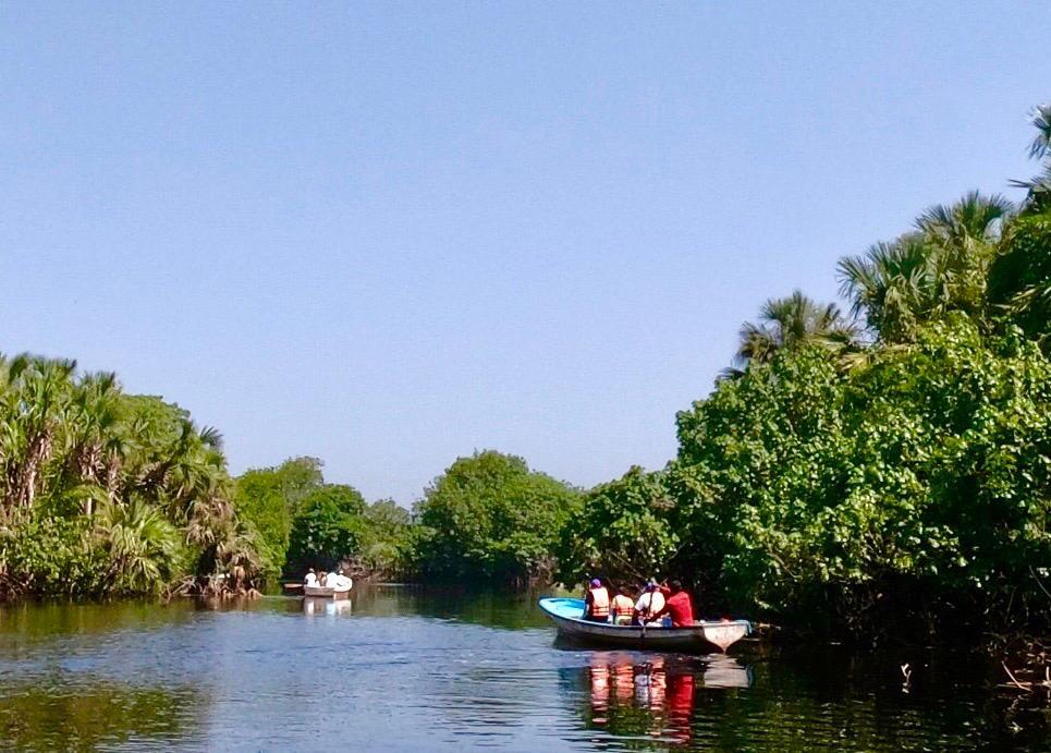 Maleta de Viajes, viajes, turismo, aventura, Maleta Eco, cocodrilos, medioambiente, Ventanilla