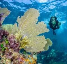 Maleta de Viajes, turismo, ecoturismo, aventura, viajes, Maleta Eco, Alltournative