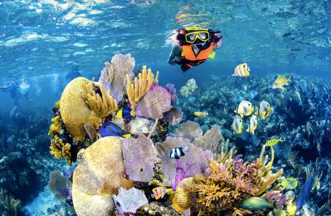 Maleta de Viajes, Maleta Deportiva, viajes, turismo, aventura, snorkel, Alltournative