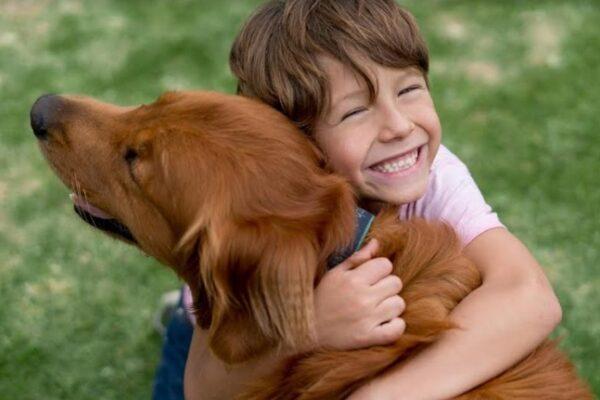 Maleta de Viajes, Maleta Pet, mascotas, niños, Kid City, Sport City,