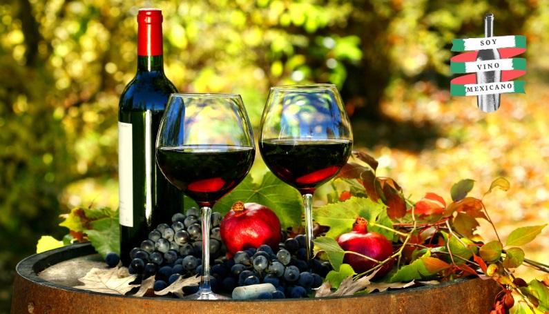 Maleta de Viajes, viajes, turismo, aventura, viajeros, vinos, soyvinomexicano