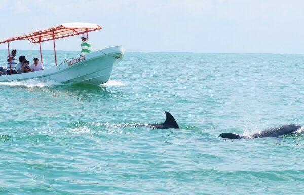 Maleta de Viajes, Hoteles, viajes, turismo, aventura, Isla Aguada, Campeche, viajeros, travel