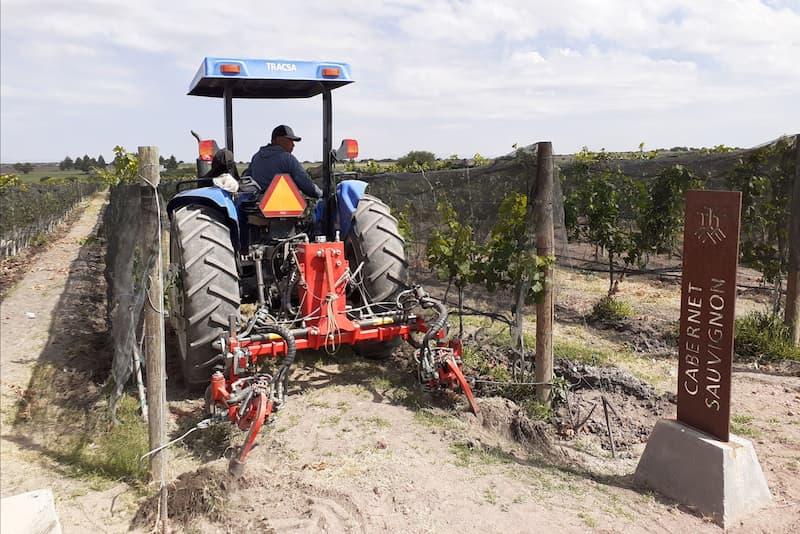 Tractor en la poda del viñedo