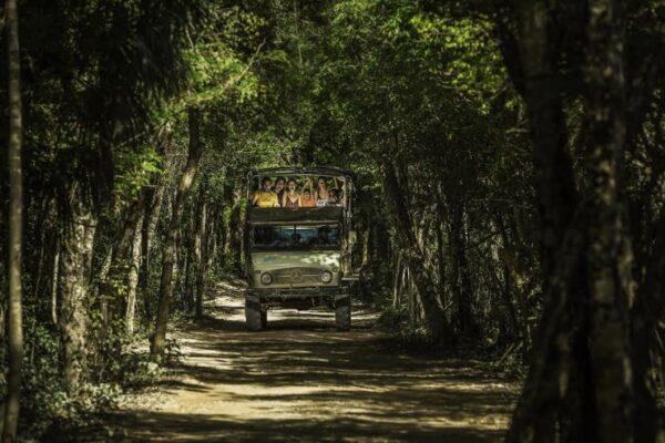 Maleta de Viajes, Hoteles, viajes, turismo, aventura, MaletaEco, Bosques, Alltournative