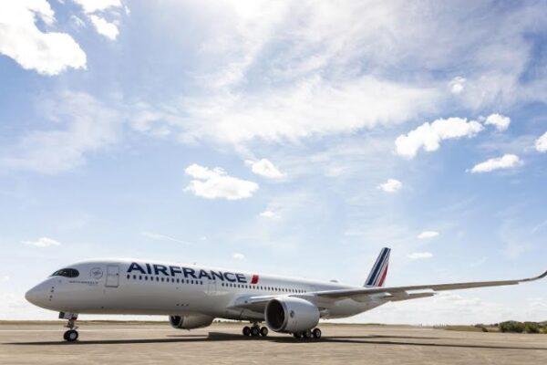 Maleta de Viajes, Hoteles, viajes, turismo, aventura, Air France