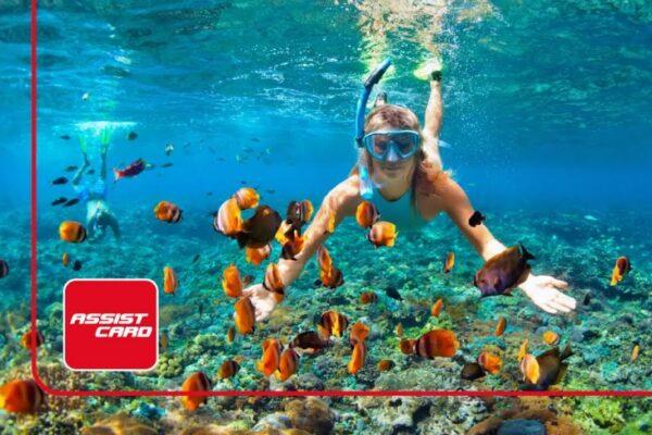 Maleta de Viajes, Hoteles, viajes, turismo, aventura, normalidad, Assist Card