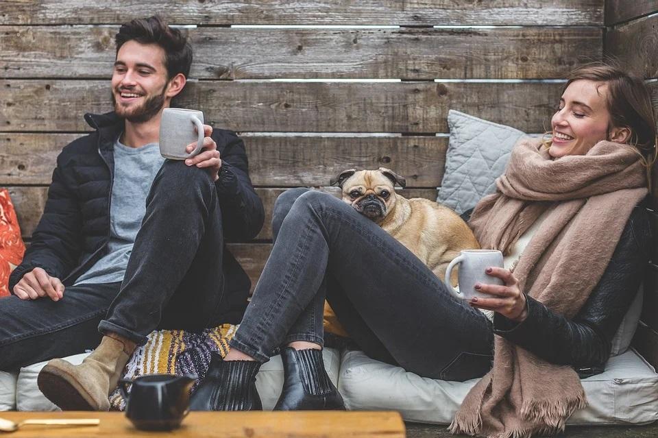 Maleta de Viajes, Hoteles, viajes, turismo, aventura, perro, MSD Salud Animal