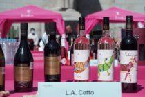 Maleta de Viajes, Festival Intervinos, Sandra Cuevas, alcaldía Cuauhtémoc, vinos, sector vinícola, Valle de Guadalupe, Monumento a la Madre