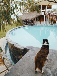 Maleta de Viajes, Hoteles, viajes, turismo, aventura, Riviera Nayarit
